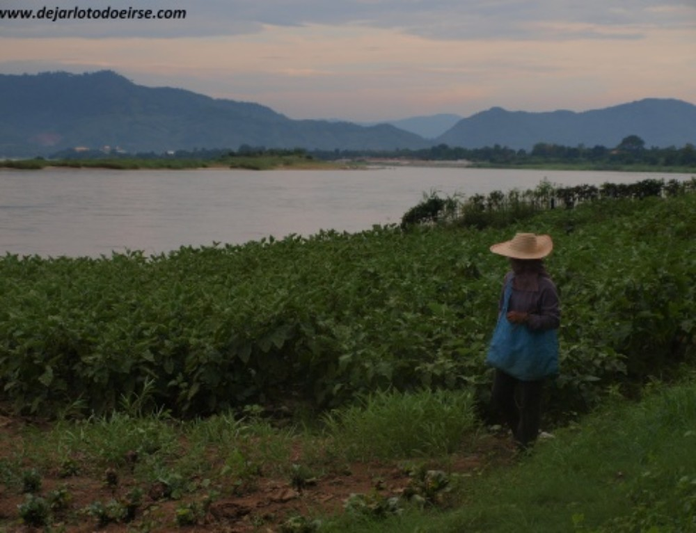 Rozando Laos: Chiang Khong