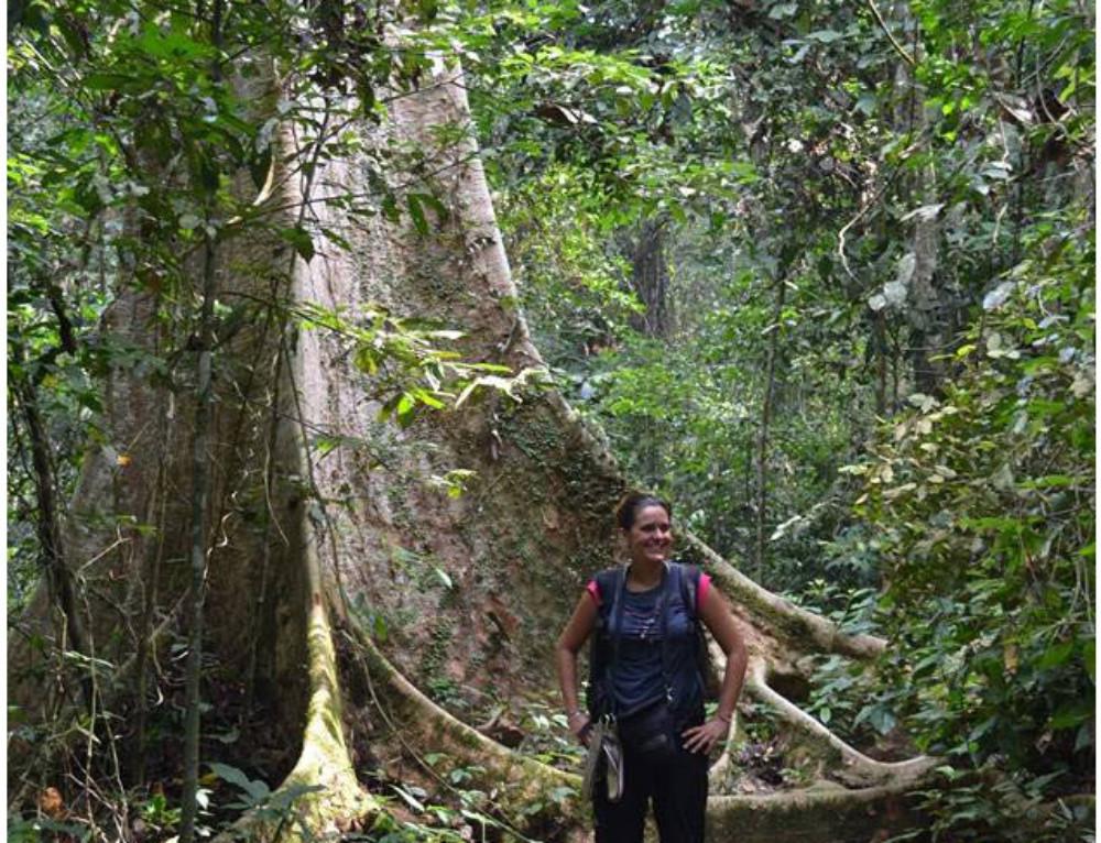 Dos días de trekking por libre en Taman Negara, la selva de Malasia
