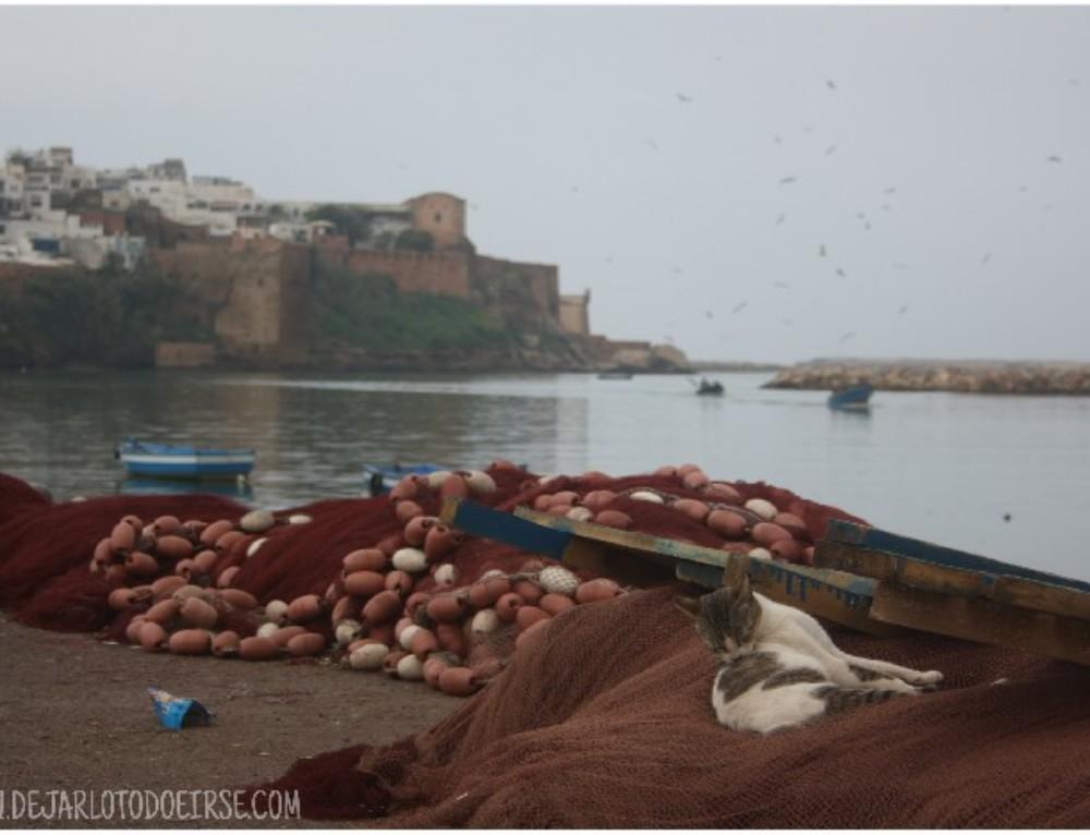 Notas de viaje: Llueve en Rabat